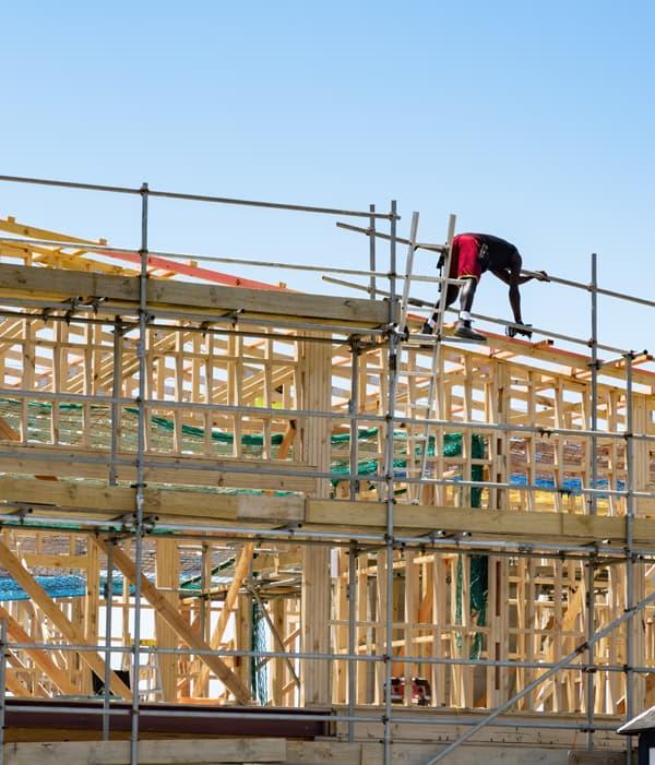 construction auckland build